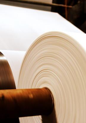 造纸和纸浆
