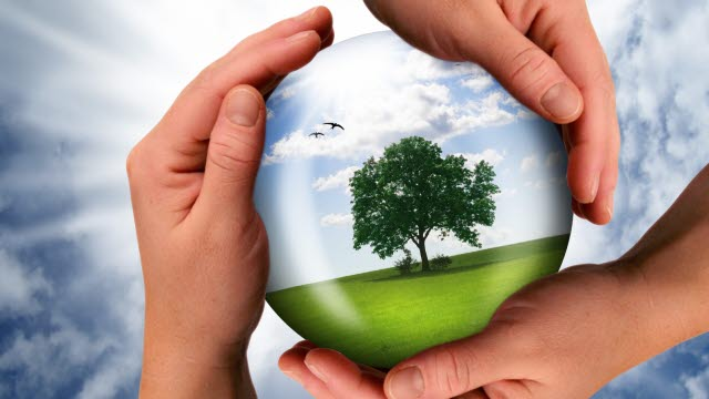 Sustainability as a strategic priority