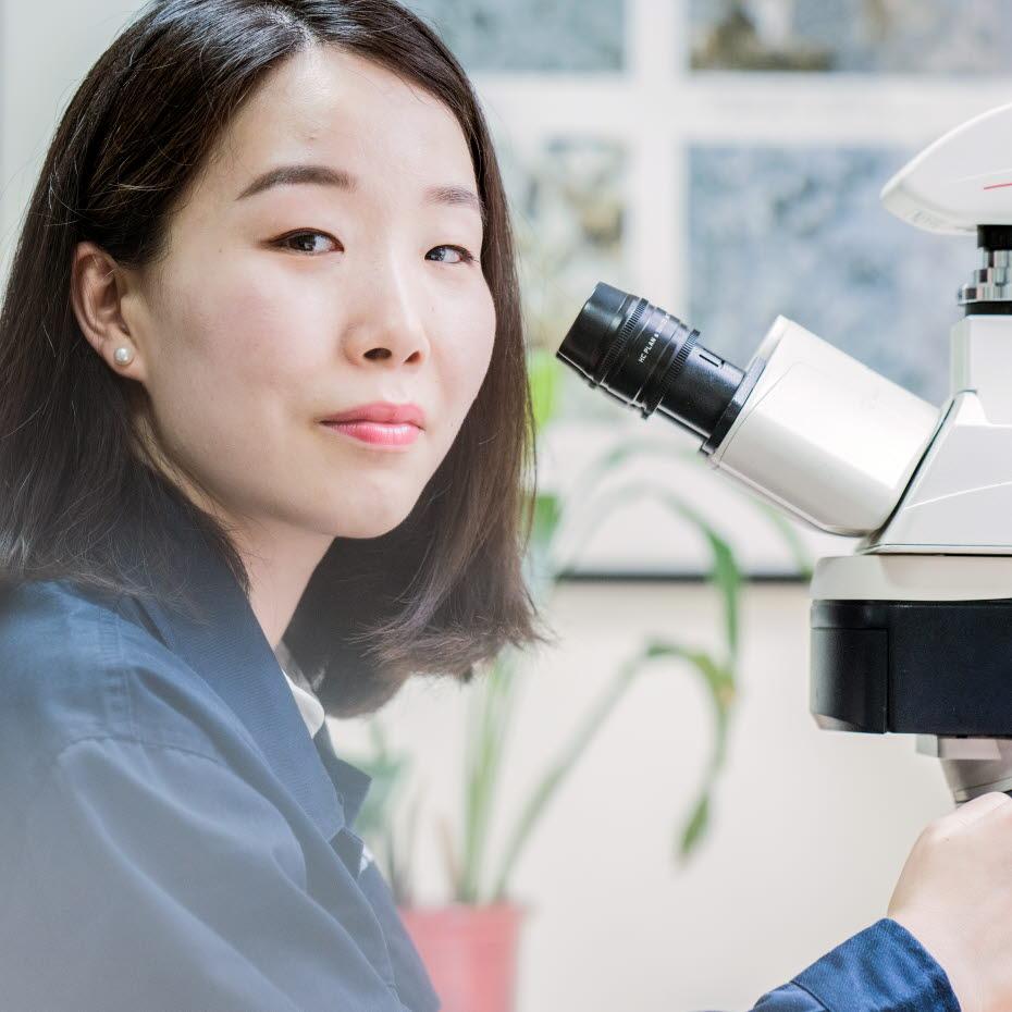 Karen Han, Technical support